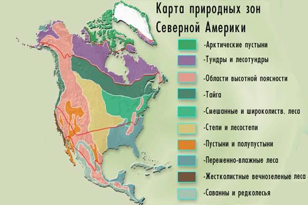 """Конспект урока по Географии """"Природные зоны Северной Америки"""" 7 класс"""